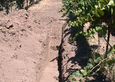 soil trench pic